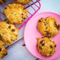 sultana and oat cookies