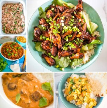 selection of family meals for the slow cooker
