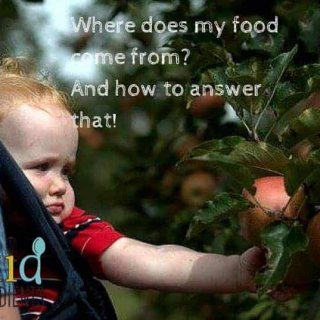 Where does my food come from_ And how to