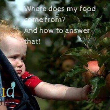 Where does my food come from? And how to answer that!