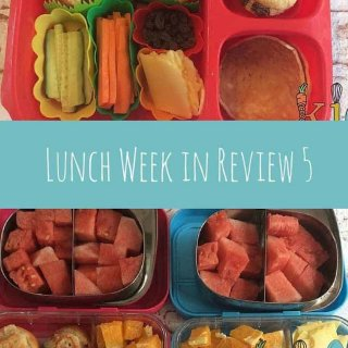 Lunch week in review number 5. All the lunches for the week with recipe links, lunchbox review links and handy hints and tips.