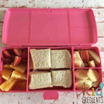 Tupperware Sandwich Plus Review
