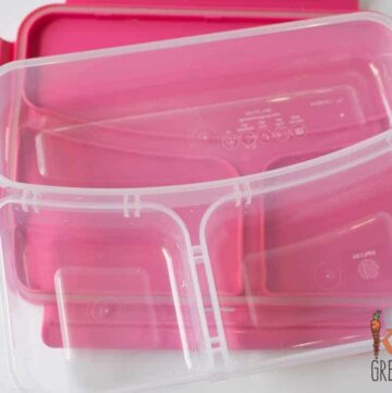 Three compartment bento lunchbox review