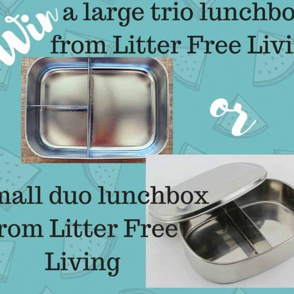 large trio lunch box review