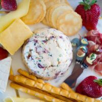 Cream cheese Christmas bauble, macadamia and cranberry dip