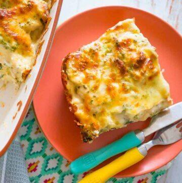 Broccoli and chicken cheesy lasagne