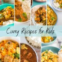 collection of curry recipes